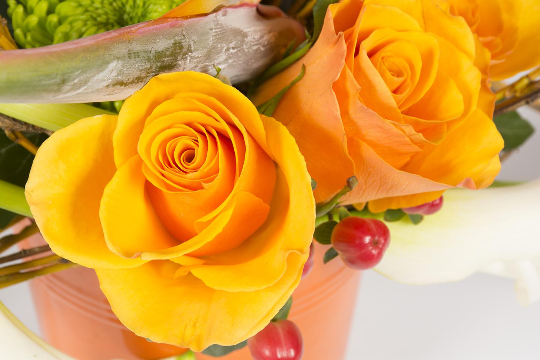 composition florale horizontale orange et blanc ecorce d 39 orange livraison fleurs le mans. Black Bedroom Furniture Sets. Home Design Ideas